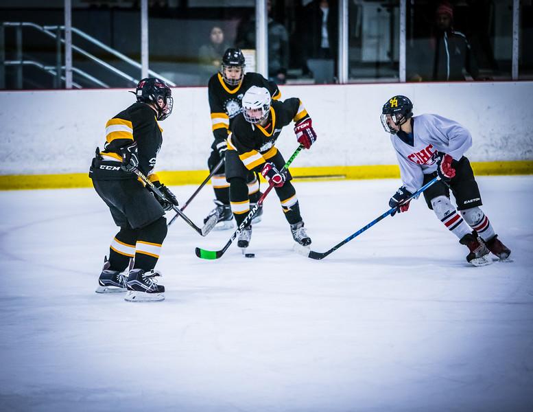 Bruins2-525.jpg