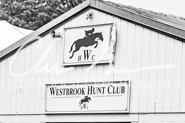 Westbrook Horse Show - July 6, 7 & 8