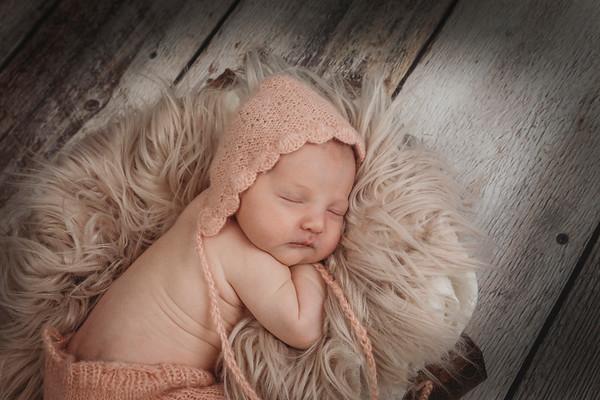 Willa Thorp Newborn - Jan 2021