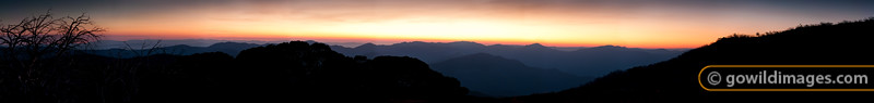 Sunrise over Mt Speculation, Mt Buggery, Crosscut Saw, Mt Howitt, Mt Magdala and King Billy from Mt Stirling. The planet Mercury is visible over the Crosscut Saw (in a larger version of this image). 55MP image, can be printed over 1.8m length