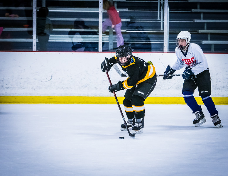 Bruins2-725.jpg