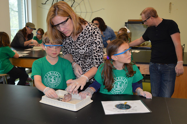 Second Grade Eye Dissection