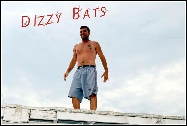Dizzy Bats at Breezy 2016
