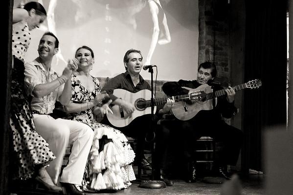 Auction Images Flamenco-Sun 2010