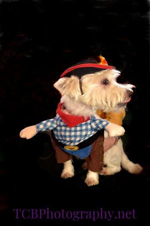 Boondogle's Pet Costume Contest