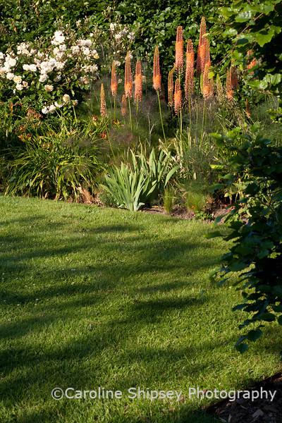 The Organic Gardens, Holt Farm-2418.jpg