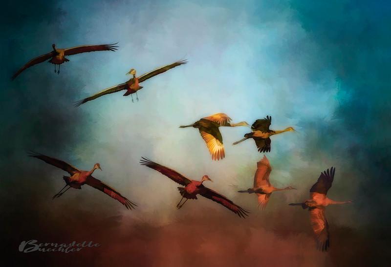 Golden Cranes.jpg