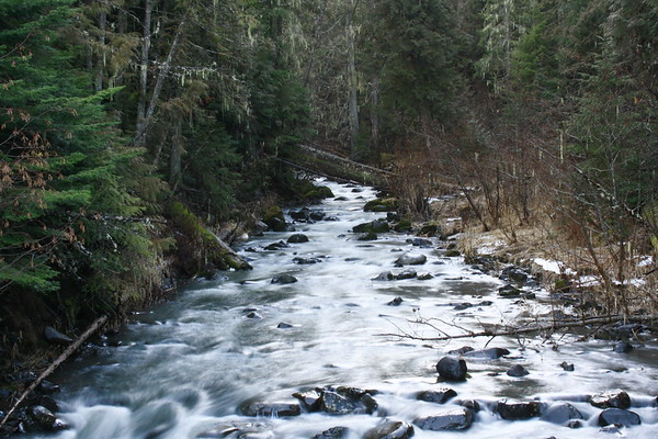 St Maries id thorn creek