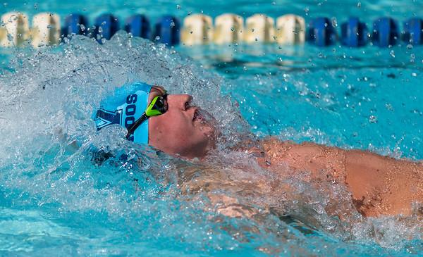 Prince-Mont Swim League Division A Championship
