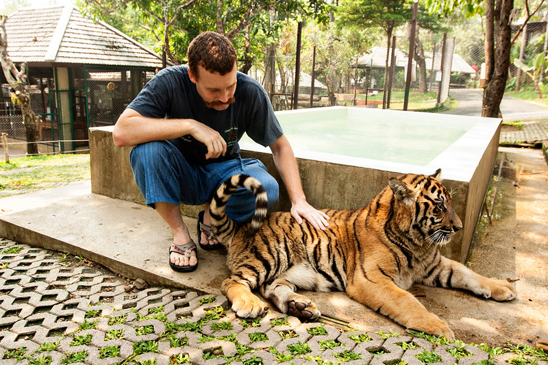 John getting friendly with a 'medium' size tiger.
