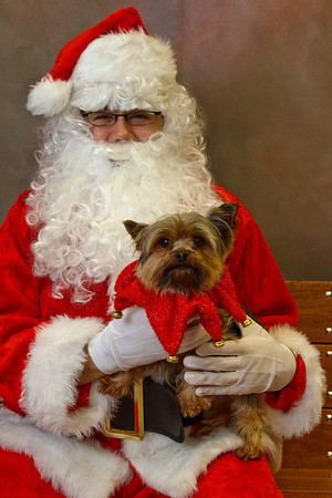 Pet Santa Photos 2009 at WAH
