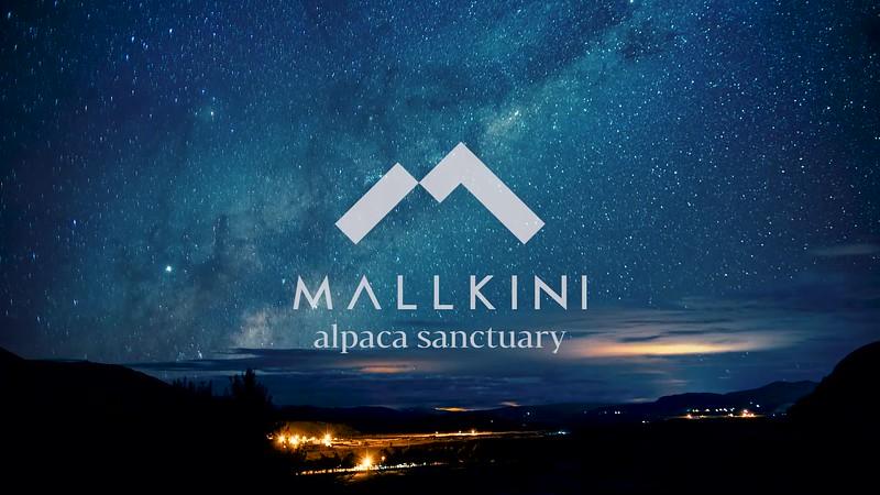 MALLKINI-30SEGS-mod-v1.mp4