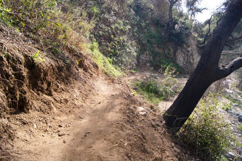 201201291652-El Prieto Trailwork.jpg