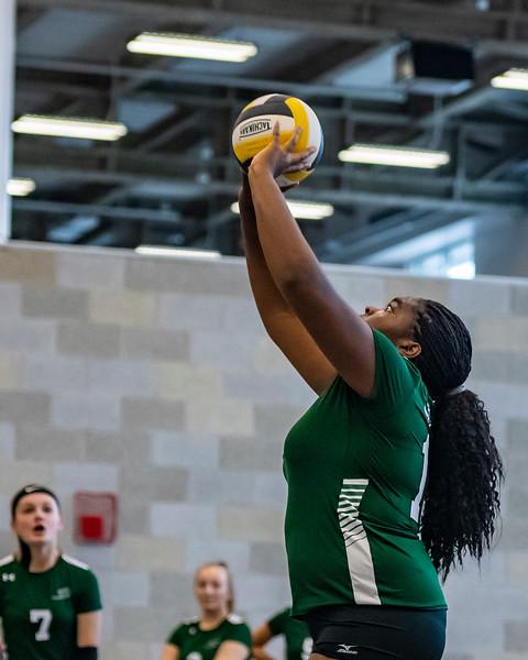 2018-Stvenson_Lady's_Volleyball-38.jpg