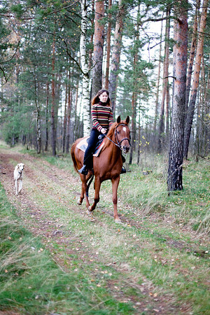 Telpina_siyar_horses_14-10-2012