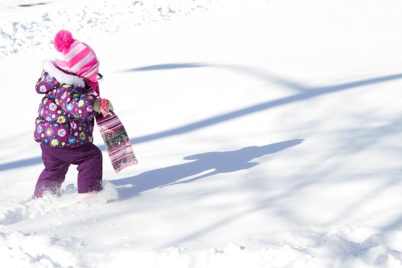 Snow2014-14.jpg