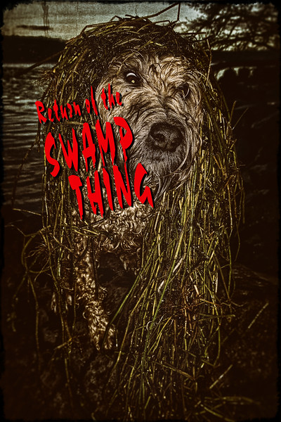 Return of the Swamp Thing