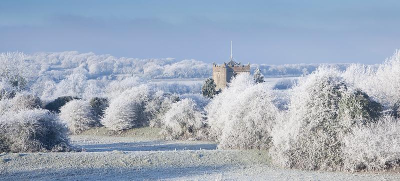 Hoar frost 12.jpg