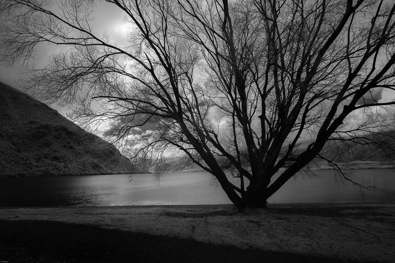 Lake Wakatipu, Kingston