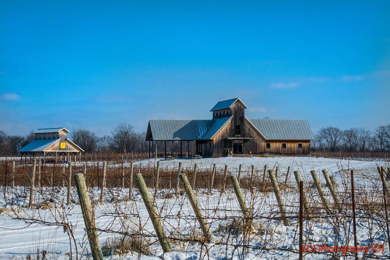 winter shoot-12.jpg