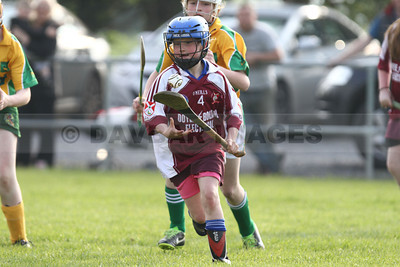 Kiltegan U14 Camogie League 2014