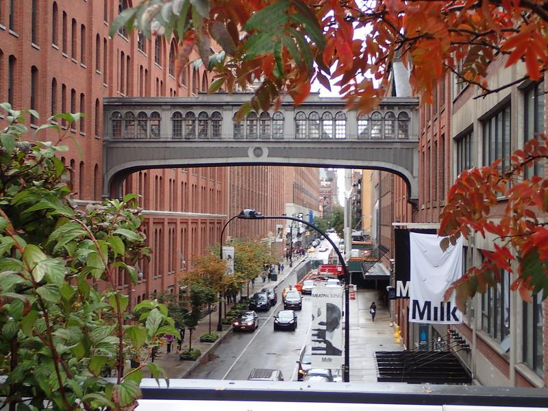 Highline091016_122507_27.jpg