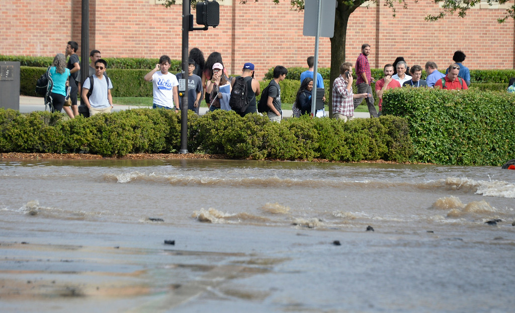 . July 29,2014. Westwood CA,  UCLA students watch the river of water from major water main break sent a geyser of water blasting through Sunset Boulevard north of the UCLA campus Tuesday, sending mud and water cascading down the street and inundating a number of vehicles as it made its way onto the campus. Photo by Gene Blevins/LA DailyNews