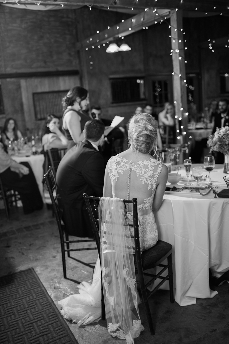Meg's stunning illusion back dress at her Bluemont Vineyards wedding. Photos by the best Washington DC wedding photographer Jalapeno Photography.