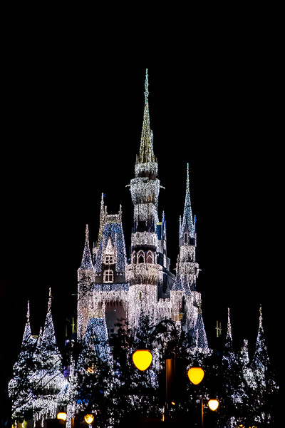 Magic Kingdom-5976.jpg