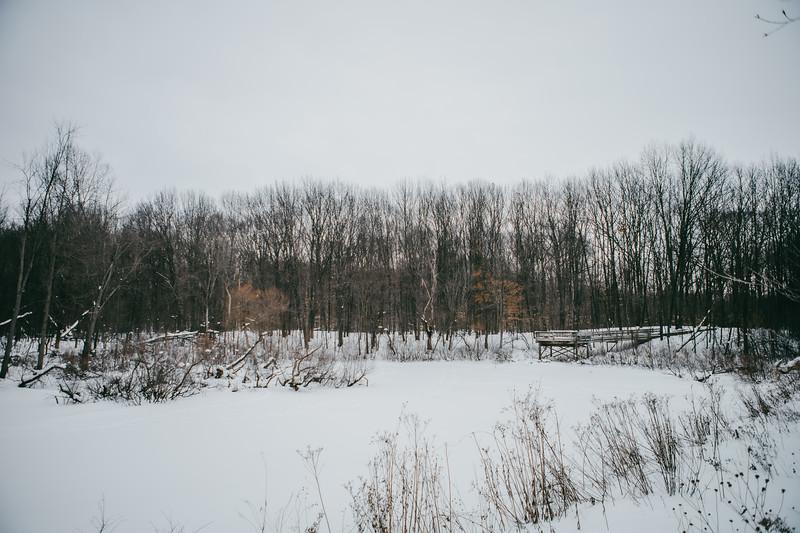AVS_EcoPreserve_Winter2021-6.jpg