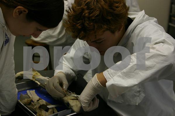 Biology Lab 2005-06
