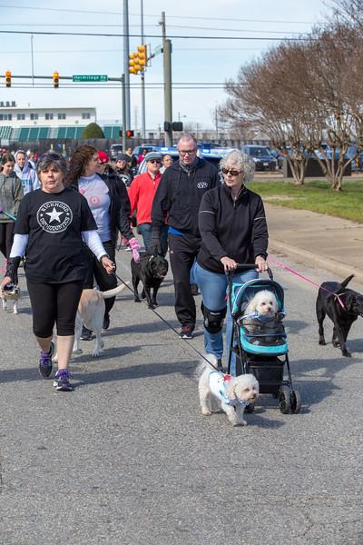 Richmond Spca Dog Jog 2018-781.jpg