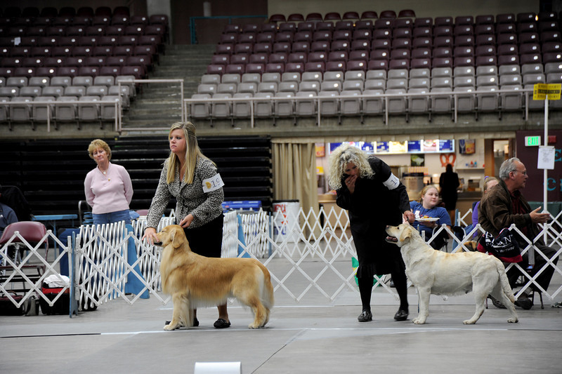 Southern Colo Kennel Club 2011
