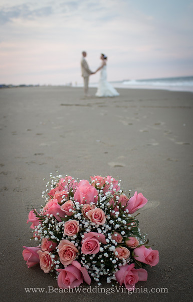 Coral & pink roses, w baby's breath