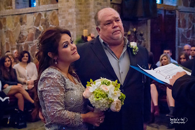 Reynolds Wedding Jan 2015