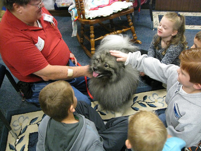 A Keeshond The Key To Responsibility