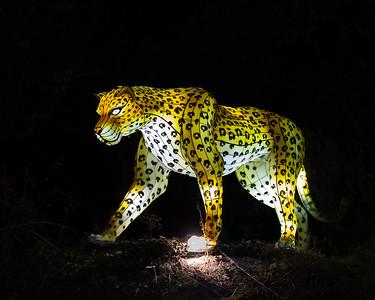 Dallas Zoo Lights Dec. 9, 2020