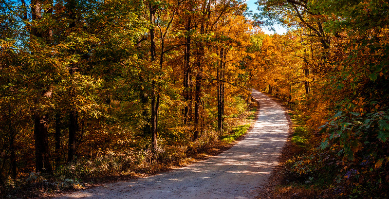 Fall Backroads