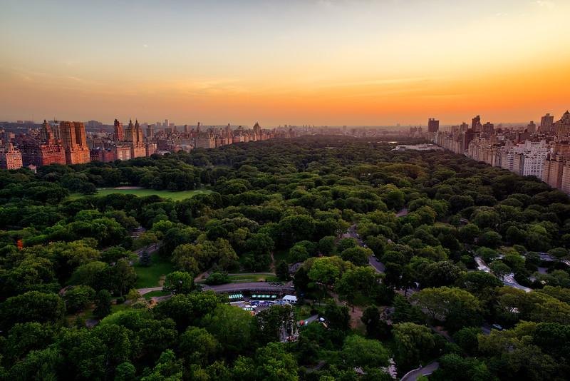 Central Park Early Morning.jpg