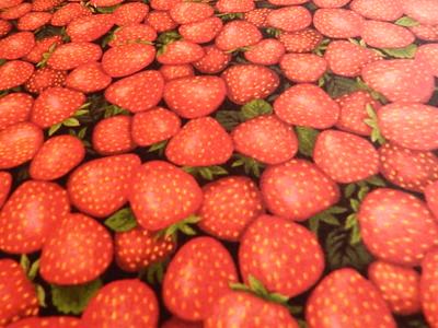 Kyla's Fruit Quilt