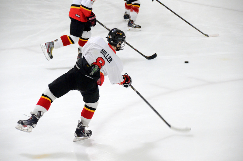 140111 Flames Hockey-001.JPG