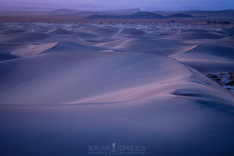 Blue Hour Sand Dunes