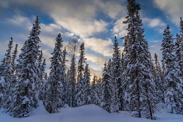 Wintertime Fairbanks Alaska