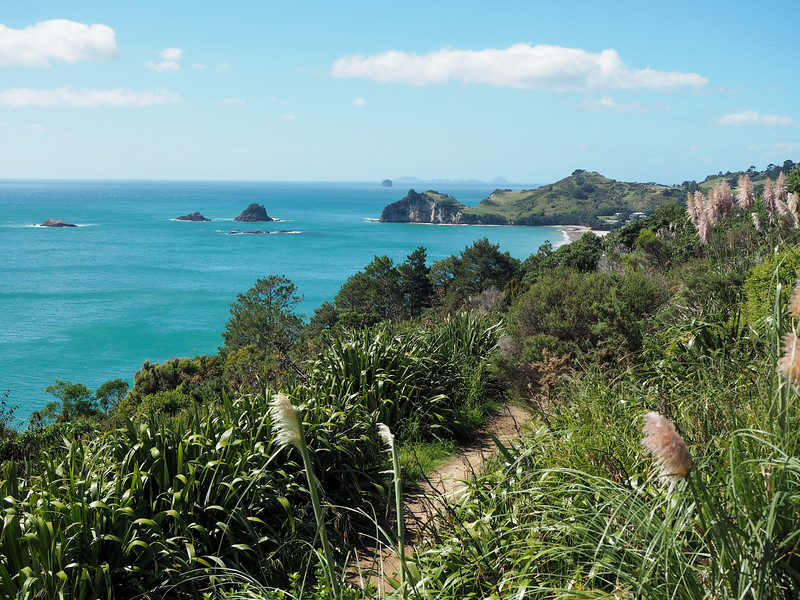 Cathedral Cove walk
