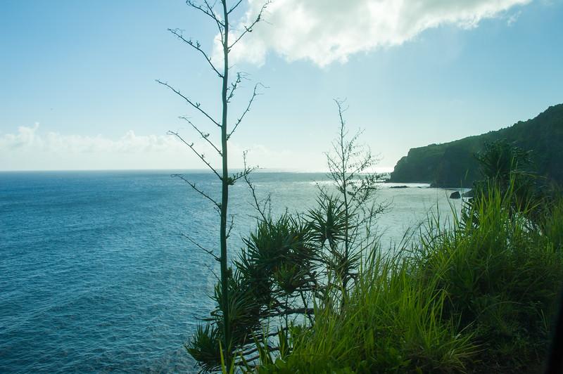 Maui_20181024_201645-000.jpg