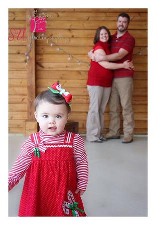 Weller Christmas Mini 2012