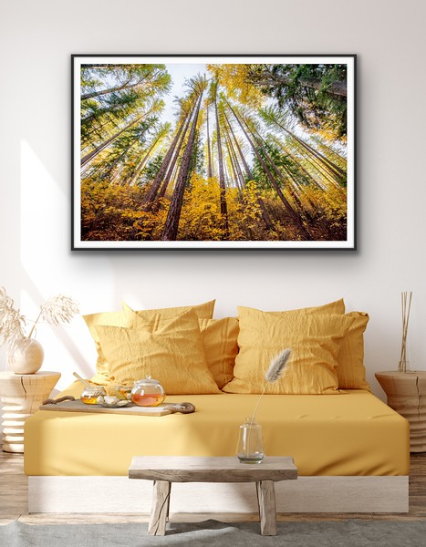 'Stand Tall' Fine Art Print Framed/Unframed