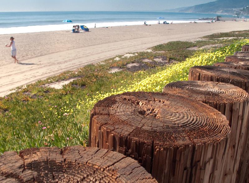 feb15_beach.jpg