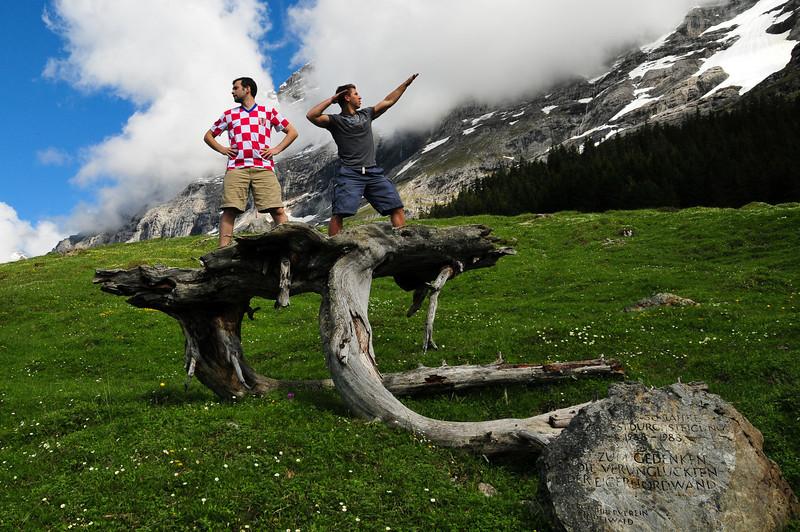 mountainHike-Tree-2