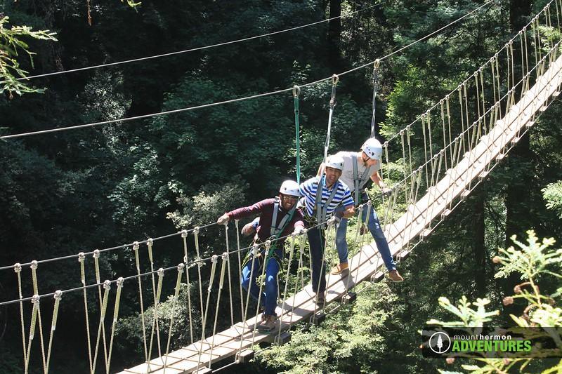 redwood_bridge_1528409952853.jpg